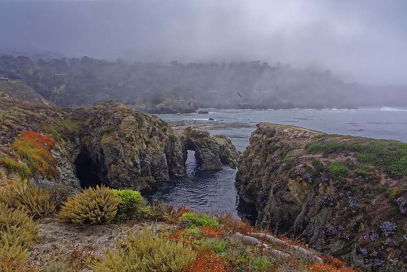California Coastline | ACT8789