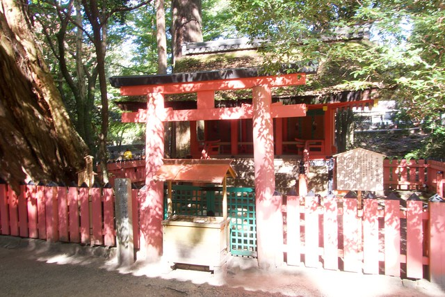 mizuya_013