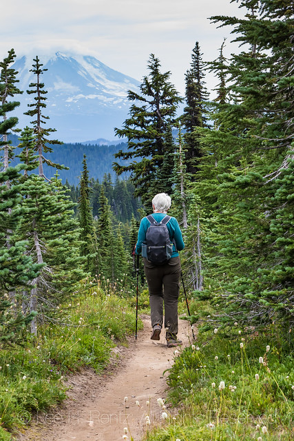 Hiker on Pacific Crest Trail in the Goat Rocks Wilderness