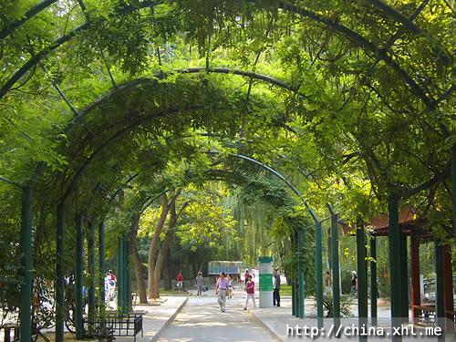 Beijing Zoo and Aquarium