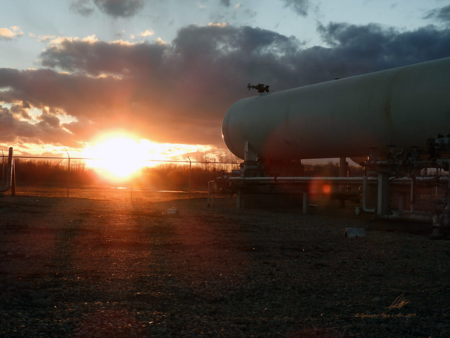 The Sun Sets on an Industry