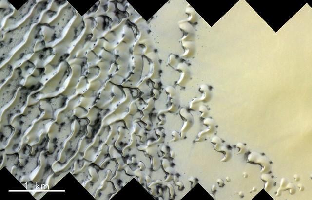 North polar dunes on Mars