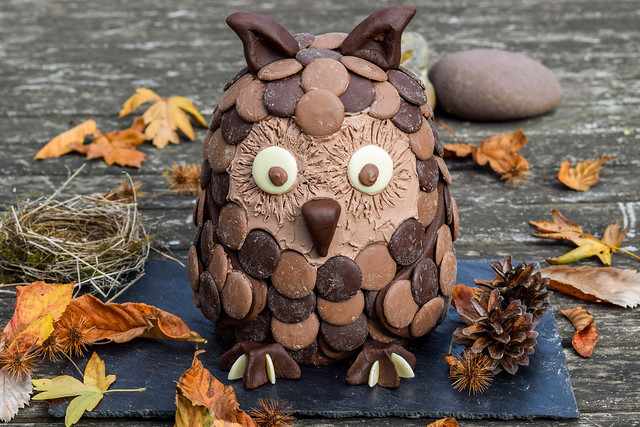 Chocolate Orange Owl Halloween Novelty Cake