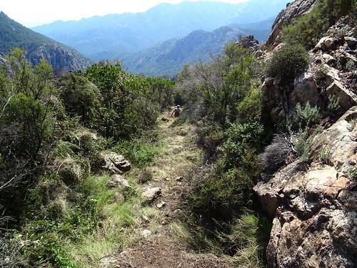 Descente du chemin de Paliri : dans la pente finale