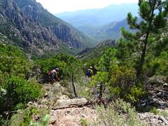 La vallée du Peralzone et de la Figa Bona depuis le chemin  de Paliri à l'embranchement avec le GR20