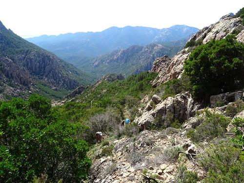 Dans la montée finale : le chemin et la vallée du Peralzone et de la Figa Bona