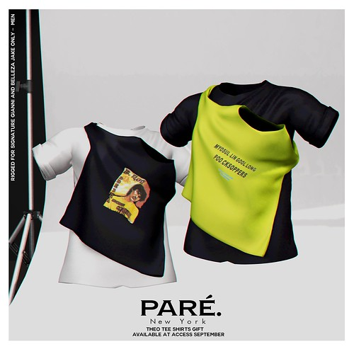 PARE - Group Gift for ACCESS Sept