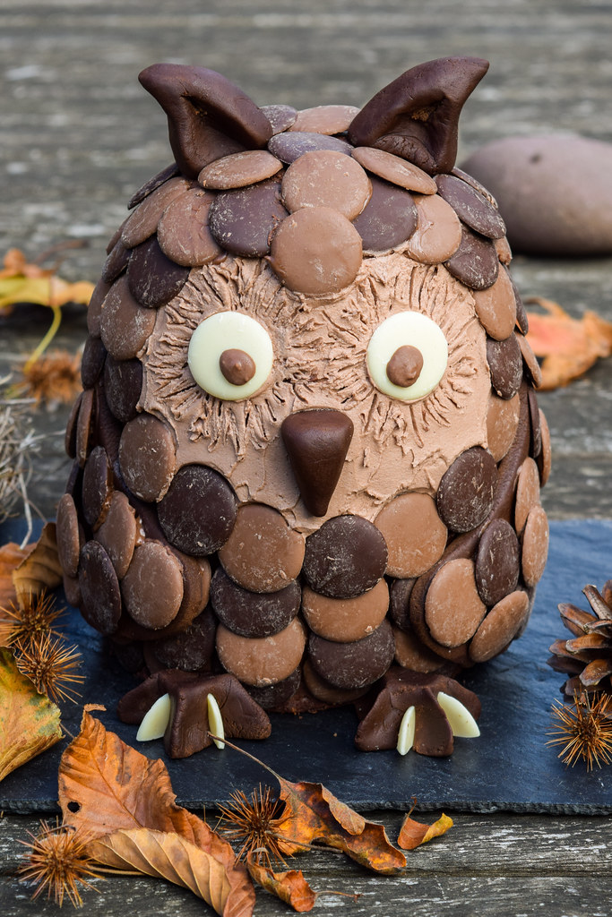 Chocolate Orange Owl Halloween Cake