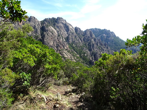 Descente du chemin de Paliri : dans la pente finale en face de Punta di Monte Sordu