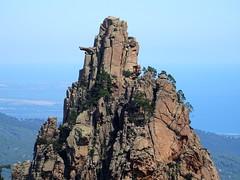 Arrivée au GR20 : le Monte Bracciutu