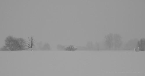 impressionism blackandwhite minimalism pentaxart belgium jurbise erbaut blackwhitepassionaward