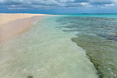 Tonga Island Lunch Break Snorkel-19