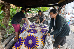 Preparing Traditional Tongan Meal-12