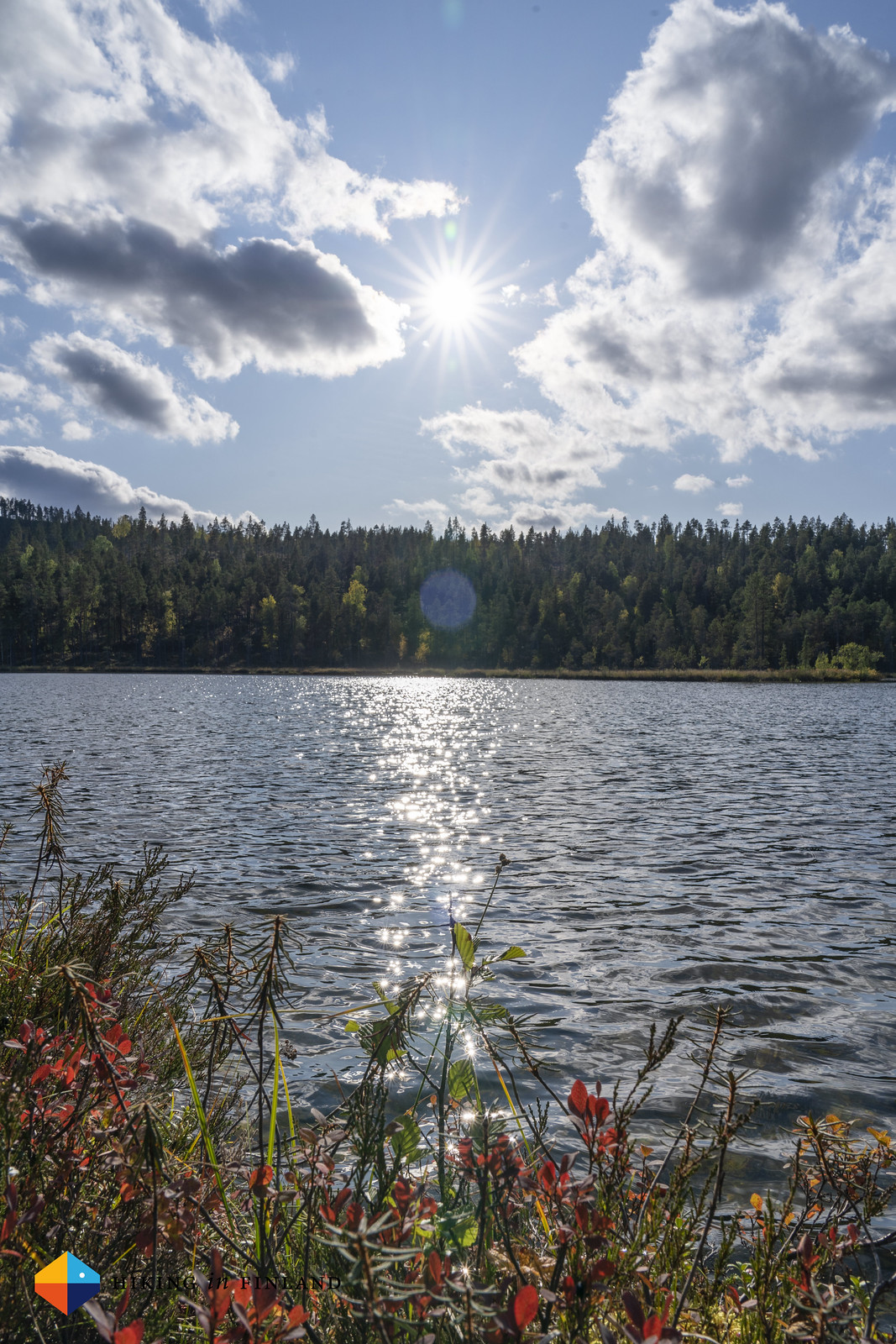 Sun. Lake.
