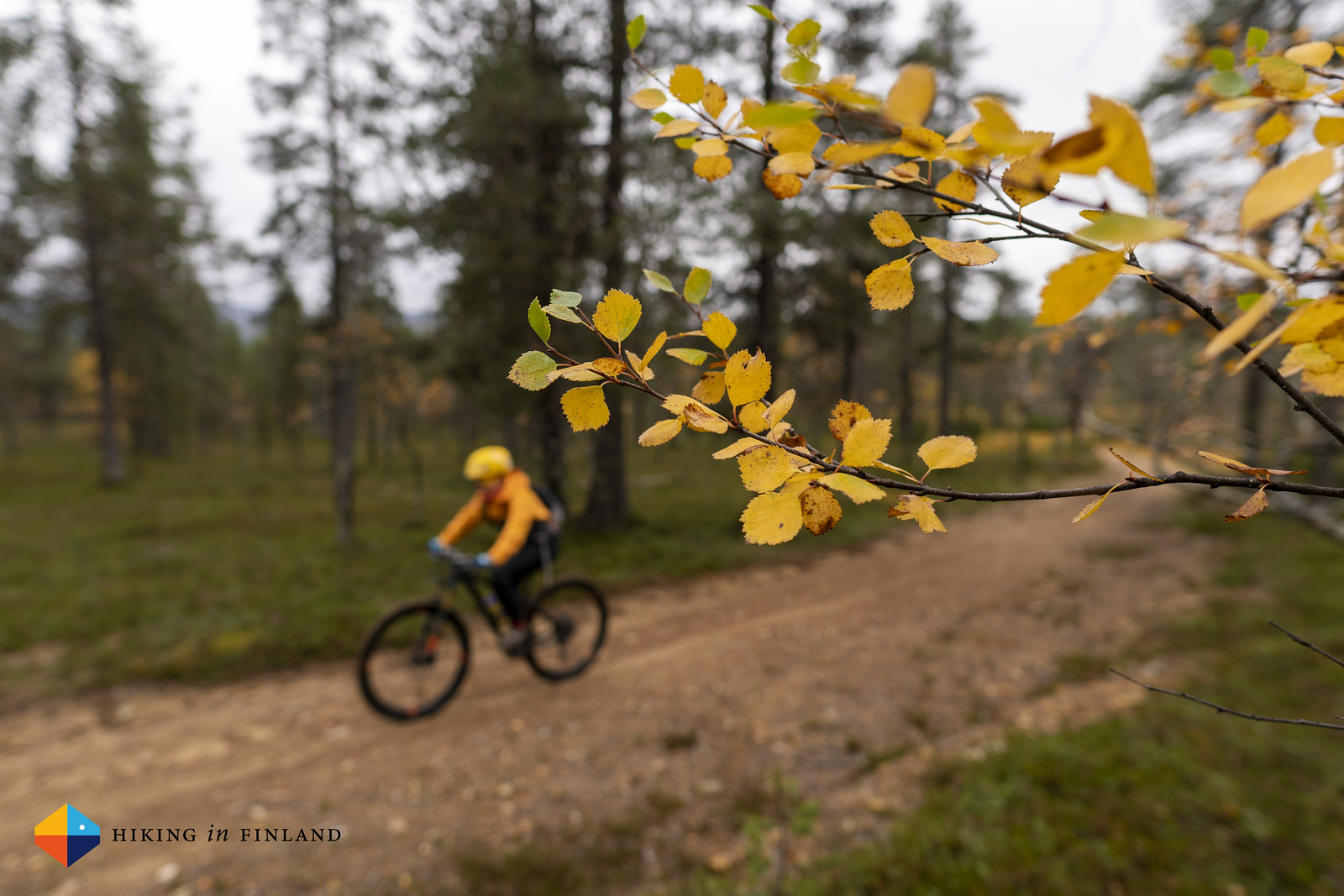 MTB with Saariselkä Training