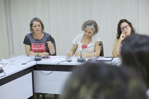 20ª Reunião Ordinária - Comissão de Mulheres