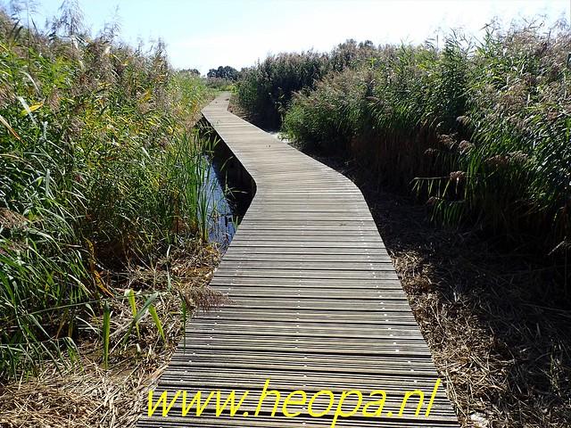 2019-09-14 Zelhem - Braamt 19 Km (81)