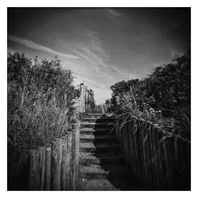 FILM - Footpath through the dunes