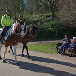Mounted Police at Avenham Park Preston