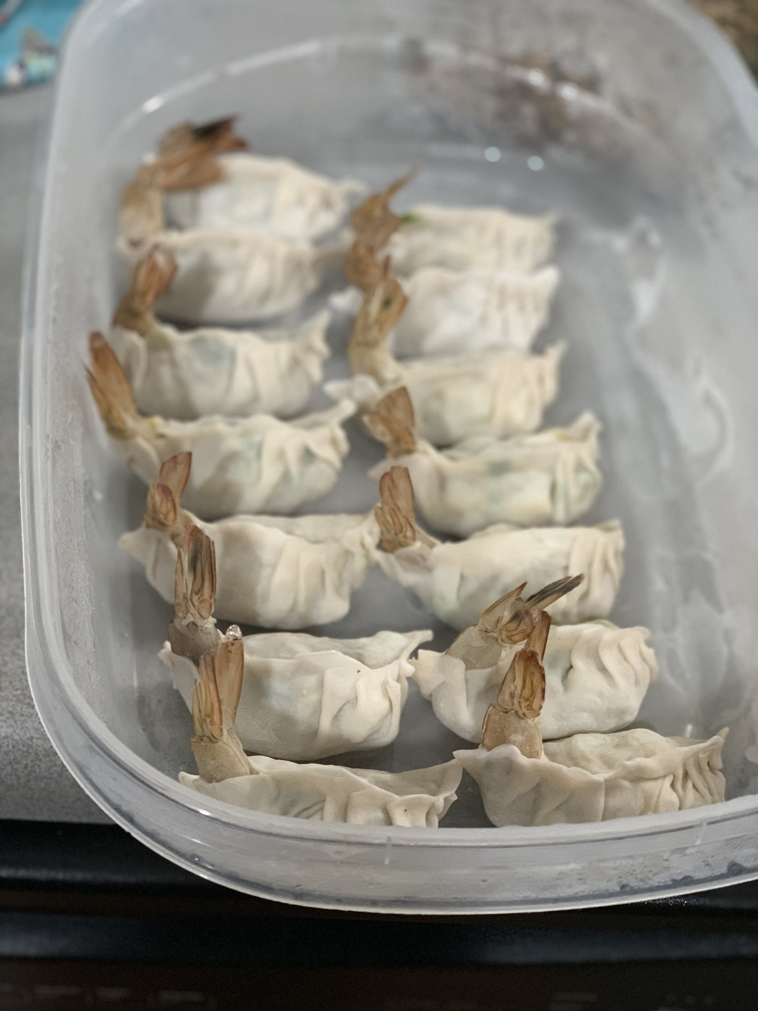 Shrimp and Tofu Dumplings