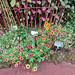 flores flora del Jardin Botanico Terra Nostra Garden Furnas Isla San Miguel Azores Portugal 02
