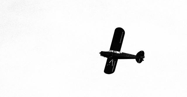 Flight Of The Monoplane