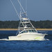 Boat_1843