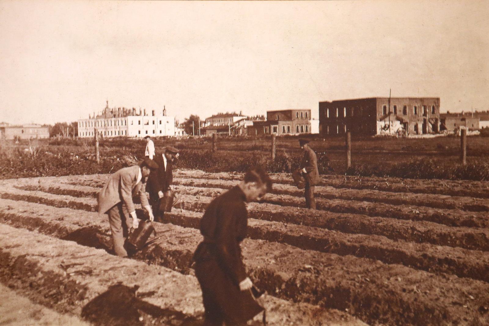 34. Служащие Губкомгособора на огородах, разбитых на месте разрушенных кварталов. 1920