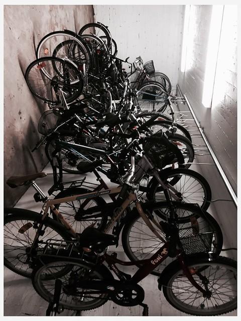 Polkupyöräilyn hurmaa