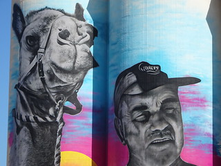 Cowell. Eyre Peninsula. Silo art work still being finished. A local cameleer and one of his beloved camels. | by denisbin