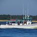 Boat Elaine-B-II_1834