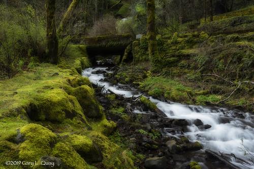 wahkeenafalls waterfall water cascade columiagorge oregon columbiarivergorge nikon garyquay moss spring springtime outside ourdoors