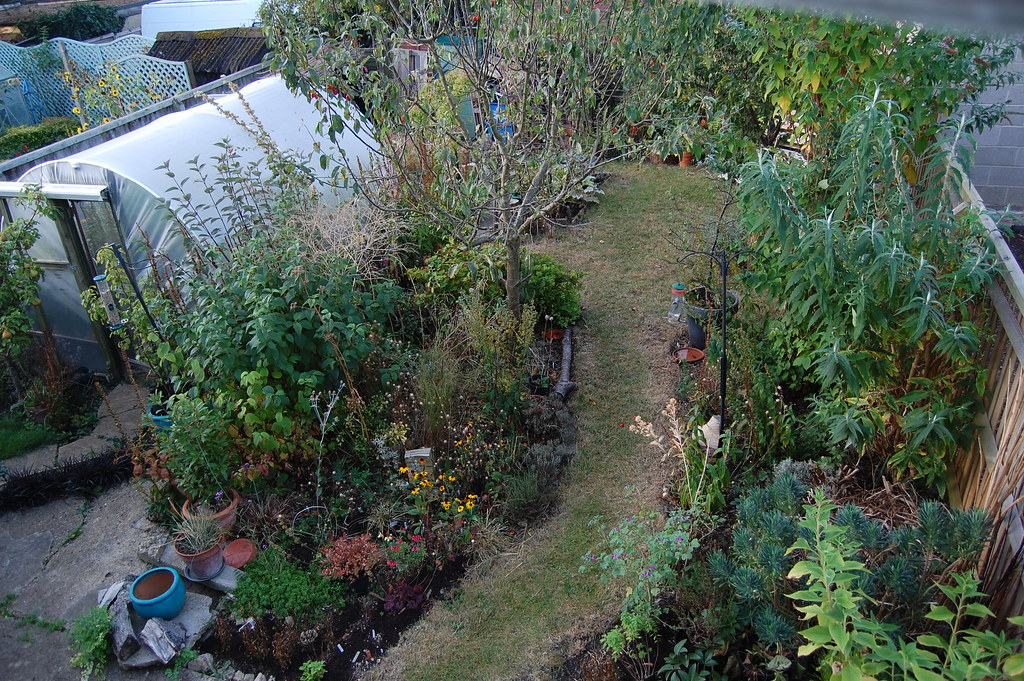 Looking Down on the Back Garden - September 2019