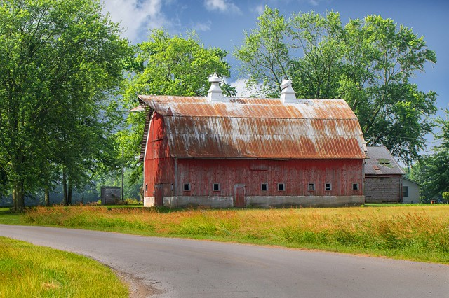 Red Barn with Yellow Grass