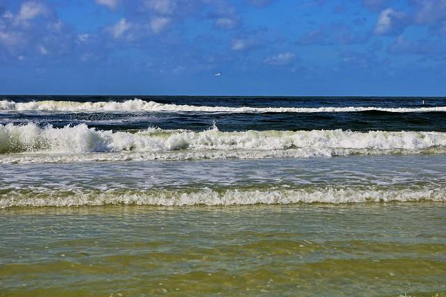 Siesta Seaside