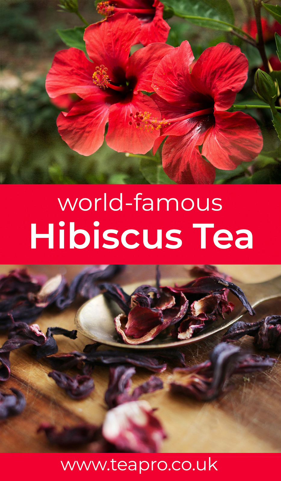 incredible-hibiscus-tea