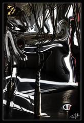 Reflets / Reflections - D'après une oeuvre de Janaina Mello Landini - Chaumont-sur-Loire