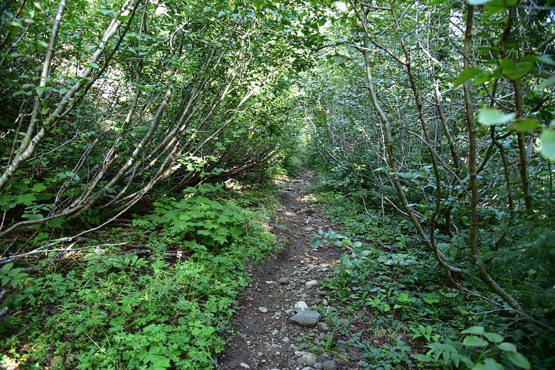 Battle Ax Mountain hike