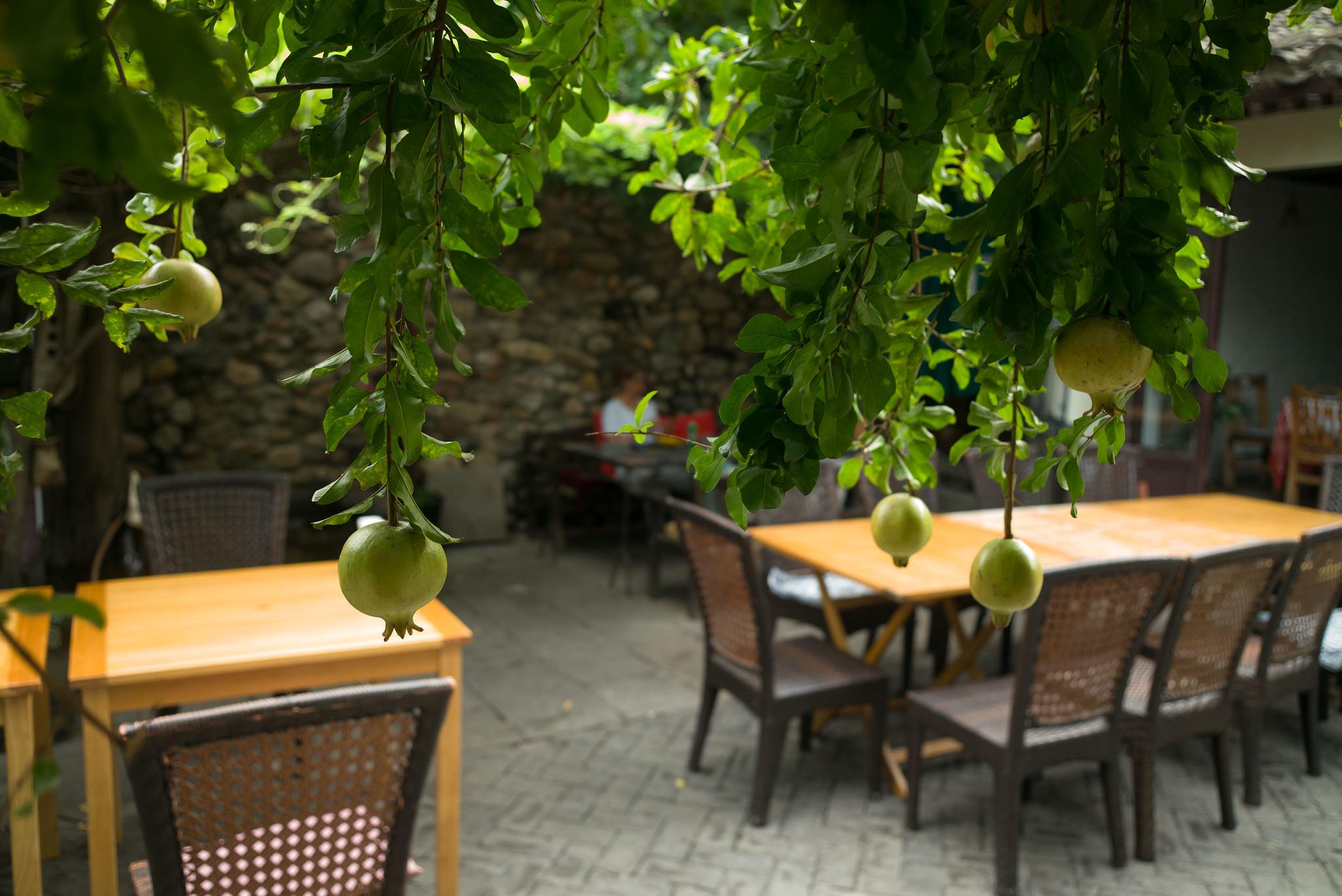 Granatapfel-Dali