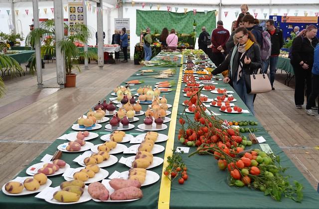 potatoes, onions, carrots, parsnips & tomatoes
