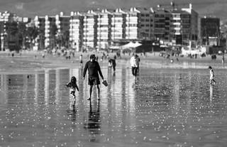 Playa #79