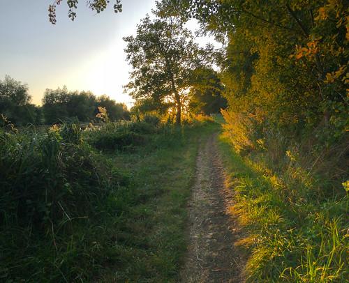 iphone8 abingdon thamesriver england englishcountryside sunset cycling oxfordshire sun