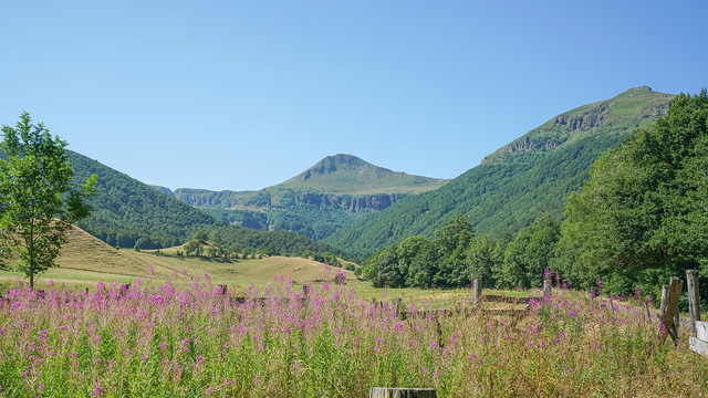 2019-08-03 (10) Vallée supérieure de la Rhue & Puy Mary