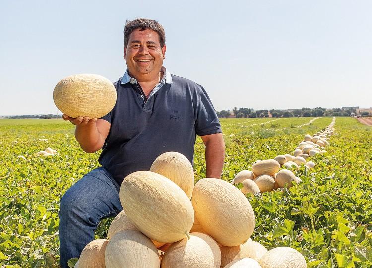 Carlos Ferreira, Hortomelão (In nete-meloal da Forbes)