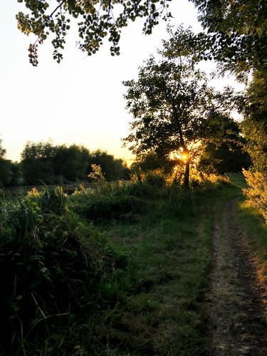 iphone8 abingdon thamesriver england englishcountryside sunset cycling oxfordshire