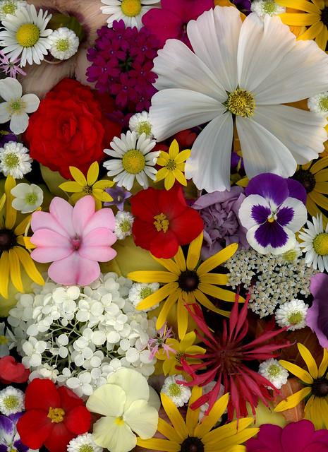 59868.01 Bouquet