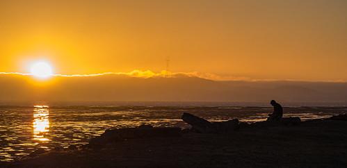 california olympus sanfranciscobay mzuiko75300mm alameda sky sunset olympusem5