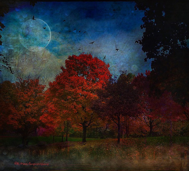 Autumn Twilight