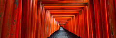 Torii Gates - Fushimi Inari Shrine, Kyoto, Japan