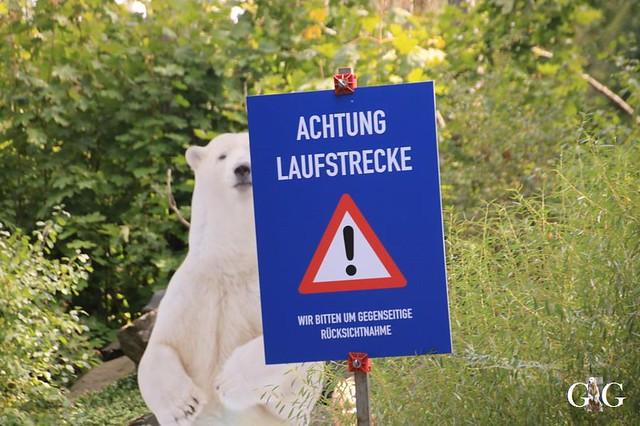 Besuch Tierpark Friedrichsfelde 08.09.201978